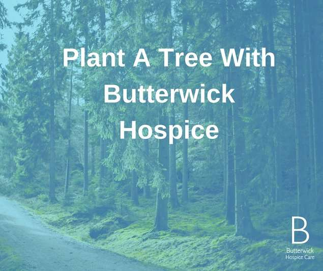butterwick-event-plant-a-tree-dec2019-banner