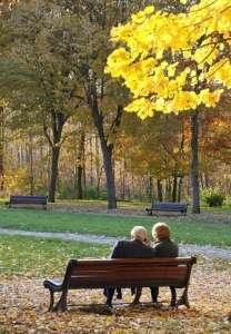 leaves-of-love-bench